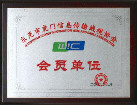 东莞信息传输线缆协会会