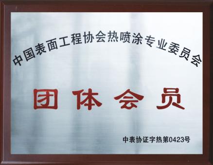 中国表面工程协会热雷火官网